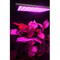 Quality Energy Efficiency Hydroponic Led Grow Lights For Indoor Gardening Alluminum Material wholesale