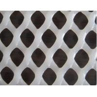 Quality Plastic flat netting for Breeding chicken wholesale