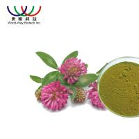 Quality Water Soluble Red Clover Extract Pharmaceutical Grade Treatment For Indigestion wholesale