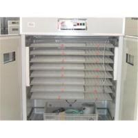 Quality AM-4 Egg Incubator and Hatcher 1848 Chicken Eggs wholesale