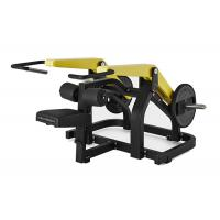 Quality OEM ODM Hammer Strength Dip Machine Multiple Function CE Certification wholesale