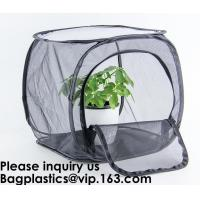 Quality Agricultural Greenhouses for Tomato Planting,Pop-Up Tomato Plant Protector Serves as a Mini Greenhouse to Accelerate Gro wholesale