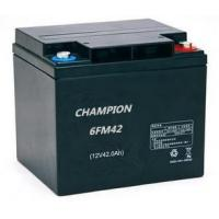 Quality Maintenance Free 12v 42ah AGM VRLA High Rate Discharge Battery 6FM42H wholesale