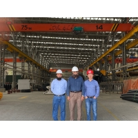 Quality Light Duty Electric Single Girder Overhead Cranes Travelling Crane With 5T Load Capacity wholesale