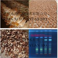 Quality Reishi Mushroom Extract polysaccharide 20% triterpenoids1.5% high quanlity guarantee wholesale