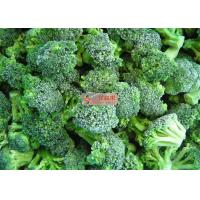 Quality Frozen Broccoli Pieces and Stem IQF freezing Broccoli in carton wholesale