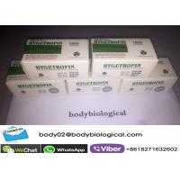 Quality Medicine Grade Purest 191AA HGH Hygetropin For Strong Big Mass White Freezed Powder wholesale