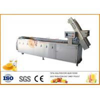 Quality SS304 Pineapple Jam Processing Machine Line Stainless Steel Material wholesale