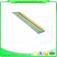 Quality 8mm Green Plastic Coated Bamboo Garden Stakes / 8 Foot Bamboo Pole wholesale