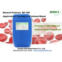 Quality Non - GMO Bacillus Subtilis Protease For Treatment Animal Blood , Cysteine / Microbial Proteases wholesale