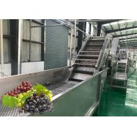 Quality Water Saving Fruit Juice Processing Equipment Fresh Grape Washing Machine Environment Friendly wholesale