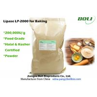 Quality Food Grade Lipase Enzyme For Baking , Robust Activity Bread Enzymes Stable Activity wholesale