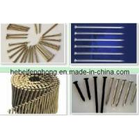 Quality ISO Fasteners - Steel Nail-Concrete Nail wholesale