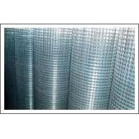 China Sell Welded Wire Mesh on sale