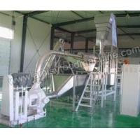 Quality Frozen French Fries Production Line wholesale