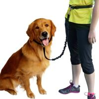 China Hands Free Dog Leash/Pet Leash,  No Pull Lightweight Jogging Dog Leash with Reflective Stitching Bungee&Adjusta on sale