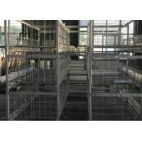 China H Type  Broiler Chicken Cage 180 Birds Capacity 1200×625×480 Mm For Chicken Farm on sale