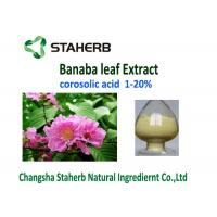 China Corosolic Acid Weight Losing Raw Materials , Banaba Leaf Extract Powder HPLC Test on sale