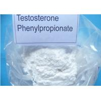 Testosterone Steroid Hormone Test PP / Testosterone Phenylpropionate For Lean Muscle