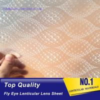 Quality PLASTIC LENTICULAR fly eye 3d lenses sheet plastic pp microlens arrays materials for packing box decoration wholesale