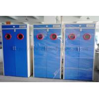 Quality Full Steel Laboratory Storage Cabinets , Blue Gas Cylinder Safety Cabinets wholesale