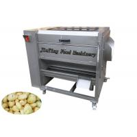 Quality Brusher Type Fruit And Vegetable Peeler Machine For Potato Peeling And Washing wholesale