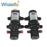 Quality Whaleflo 12V FLO-2203 70PSI 2.6LPM  pressure sprayer pump/ electric battery powered water pump wholesale