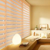 China Restroom Windows Waterproof Roller Blinds Zebra Blinds Customized Size Various Color on sale