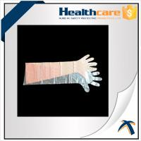 Quality Dustproof Disposable Hand Cloves , Full Arm Disposable Food Service Gloves wholesale