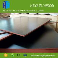 China 2018 new wood glue plastic coated plywood concrete form plywood weight shuttering plywood on sale