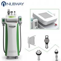 China Cryolipolysis fat freeze slimming machine  body shaping freeze  fat machine on sale
