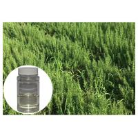 Quality Anti Oxidation Rosemary Essential Oil For Skin Colorless Fresh Herbs Smell wholesale