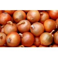 Quality Golden Sweet Natural Fresh Onion Contains Pantothenic Acid ( B5 ) , Water, Better quality wholesale