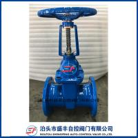 Quality Rising Stem ductile iron Gate Valve made in China wholesale