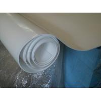Buy cheap 70shore A Colored Plastic Sheet Expand Teflon Sheet For Pharmaceutical , from wholesalers