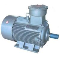 Quality YB2 Series Explosion Proof Three Phase Asynchronous Motor wholesale