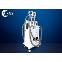 Quality Ce Certificate Salon Cryolipolysis Slimming Machine For Fat Loss wholesale