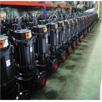 Quality HT200 Grey Cast Iron Sewage Pump High Pressure Copper Wire Motor Custom Color wholesale