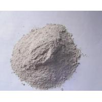 China shell powder,oyster shell whiting on sale