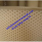 Quality Plastic flat mesh/Plastic plain netting wholesale