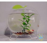 Quality Plastic modern acrylic fish tank wholesale