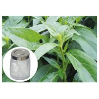 Quality Herb Andrographis Paniculata Extract , 98% Andrographis Paniculata Powder wholesale