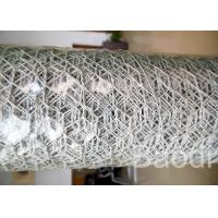 Quality White Color Plastic Poultry Netting / Chicken Wire Mesh Roll With Hexagonal Holes wholesale