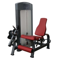 Quality Professional Multi Gym Equipment Welded Frame Bodybuilding With Prone Leg Curl wholesale