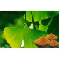 China CONBA  Standardized Ginkgo Biloba For Memory Loss from GACP planting base on sale