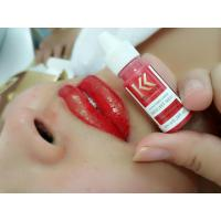 China High Conentration Eyeliner Permanent Makeup Lips Tattoo Pigment Free Iron Oxide on sale