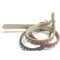 China Pet Collar, Pet Leashes on sale