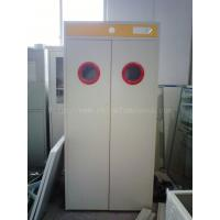 Quality Satety Laboratory Storage Cabinets , Gas Cylinder Cabinet With Alarm System wholesale