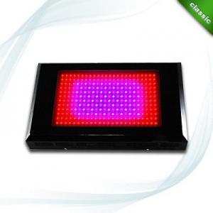 China 600 Watt Square LED Plant Grow Lights Full Spectrum For Vegetable Grow Lighting on sale
