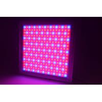 Quality Full Spectrum Dimmable LED Grow Lights IP65 Waterproof With 58W Power wholesale